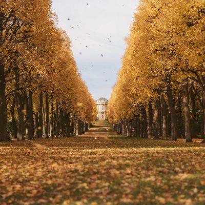 Potsdam im Herbst